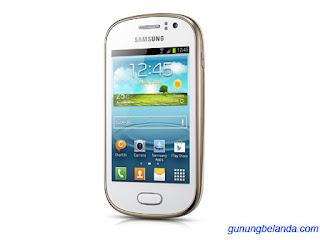 Cara Flashing Samsung Galaxy Fame (NFC) GT-S6810P