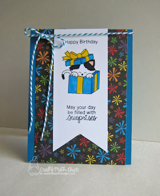Present Peeking Kitty Birthday Card by Crafty Math Chick | Newton's Christmas Cuddles and Raccoon Rascals Stamp sets by Newton's Nook Designs