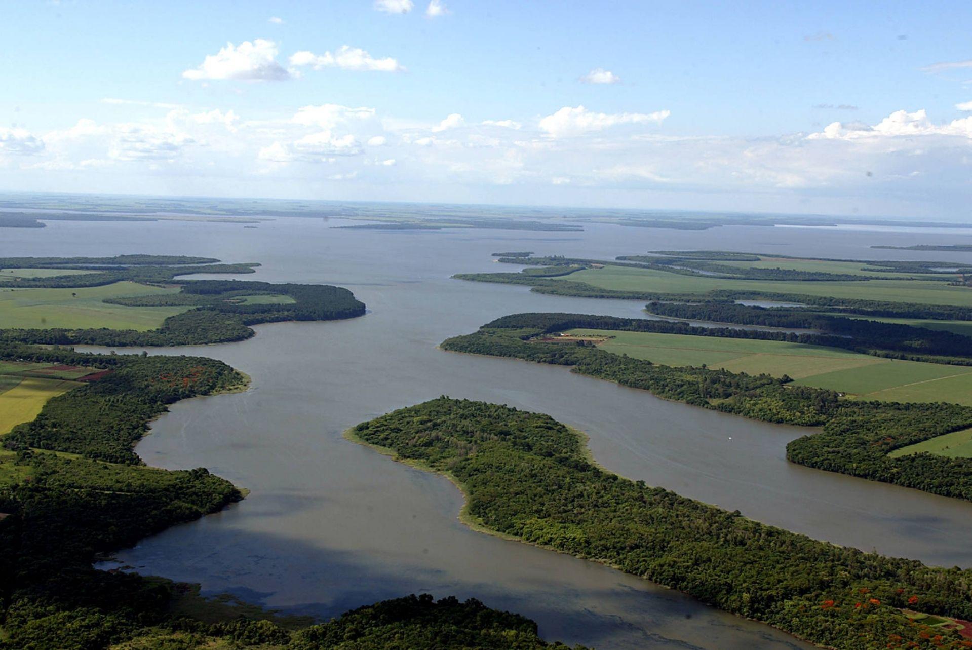 Portos do Paraná inicia ações de recuperação e preservação da vegetação nativa no litoral