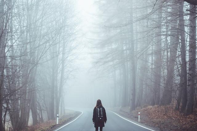 https://pixabay.com/pt/photos/nevoeiro-n%C3%A9voa-estrada-perdeu-1208283/
