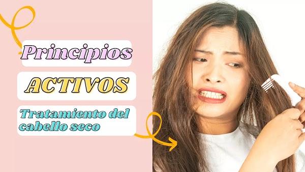 ▷ Cabello seco remedios caseros efectivos | Principios activos