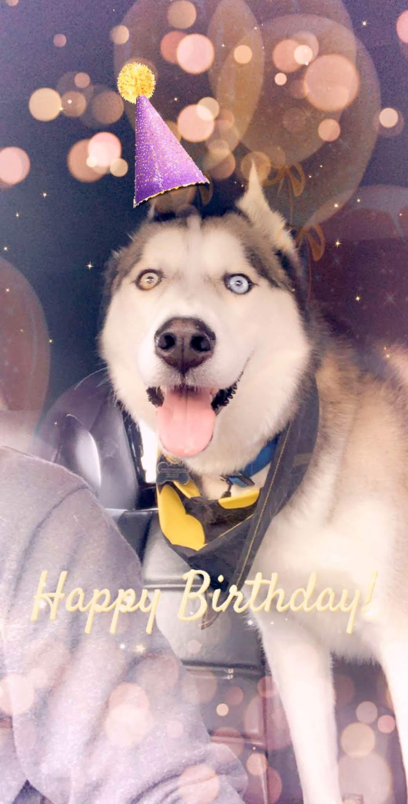 Oliver's 4th Birthday