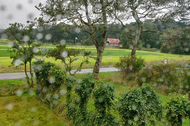 Best Texel Hotels - Bos en duin review