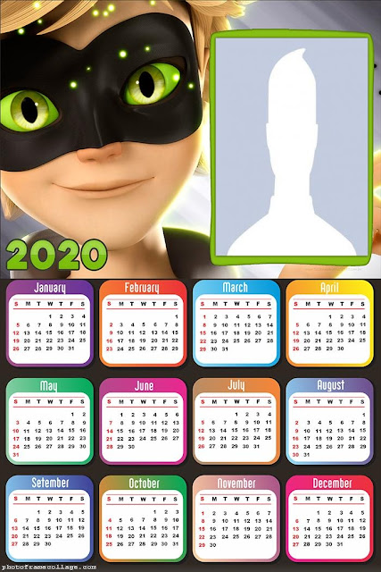 Cat Noir: Free Printable 2020 Calendar.