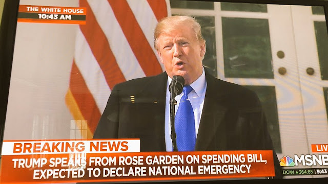 "Image Attribute: President Donald J. Trump Declaring ""National Emergency"" on LIVE TV / Source: MSNBC Screengrab (Dated: February 15, 2019)"