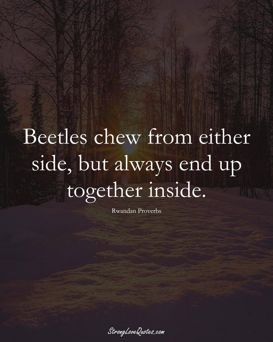 Beetles chew from either side, but always end up together inside. (Rwandan Sayings);  #AfricanSayings