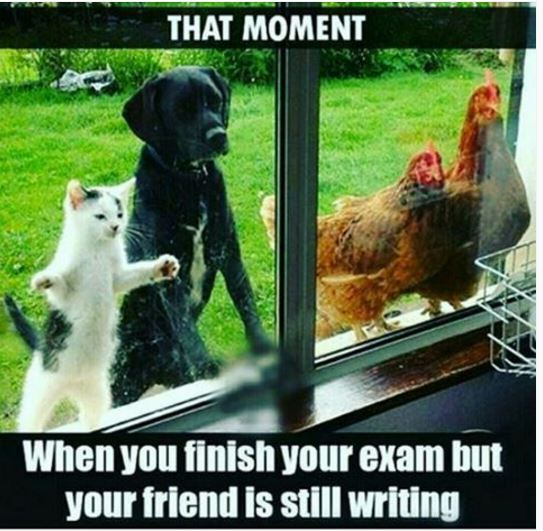 JUICY JIST: When you finished an exam but you friend is ...
