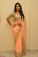 Bhanu Shri looks stunning in Beig Saree choli at Kalamandir Foundation 7th anniversary Celebrations ~  Actress Galleries 018.JPG