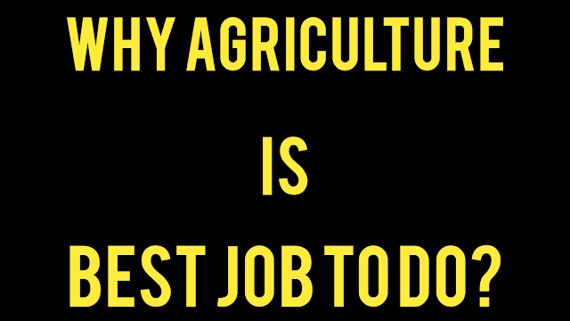 Why Agriculture Is Best Job In World?