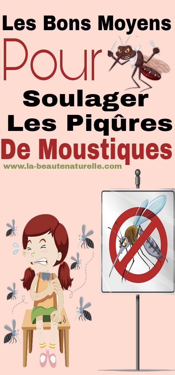 Les bons moyens pour soulager les piqûres de moustiques