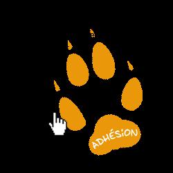 https://www.helloasso.com/associations/je-suis-la-piste/adhesions/fiche-d-adhesion-2019-2020