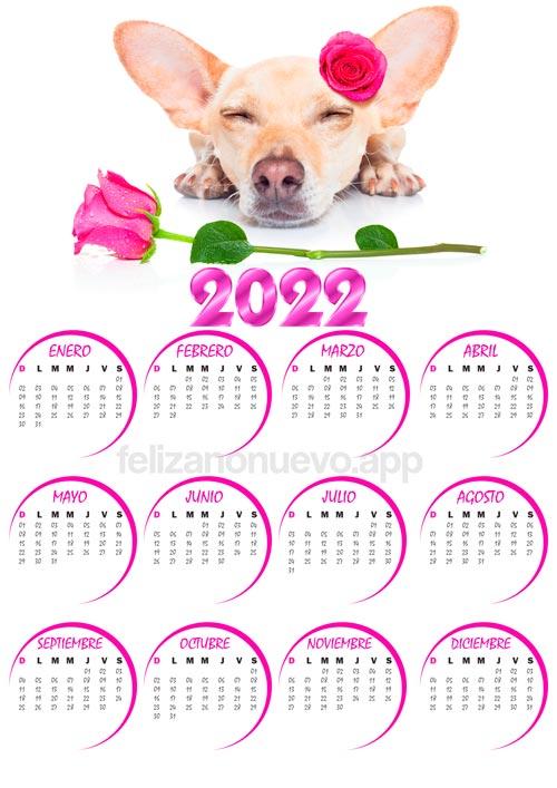 calendario 2022 de perro para imprimir