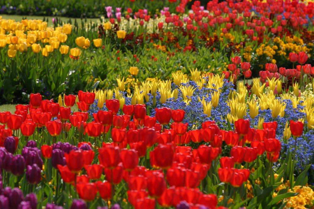 Better Homes And Gardens Fall Desktop Wallpaper Edging Design Ideas Designs For Garden Flower Beds