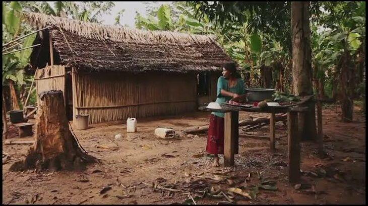 Los t'simane, la tribu amazónica cuyo cerebro de sus habitantes envejece 70% más lento que el resto
