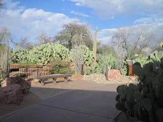 Ethel M Cactus Garden.
