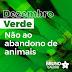 Dezembro Verde: Não ao abandono de animais
