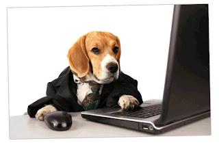 ideas de negocios con mascotas