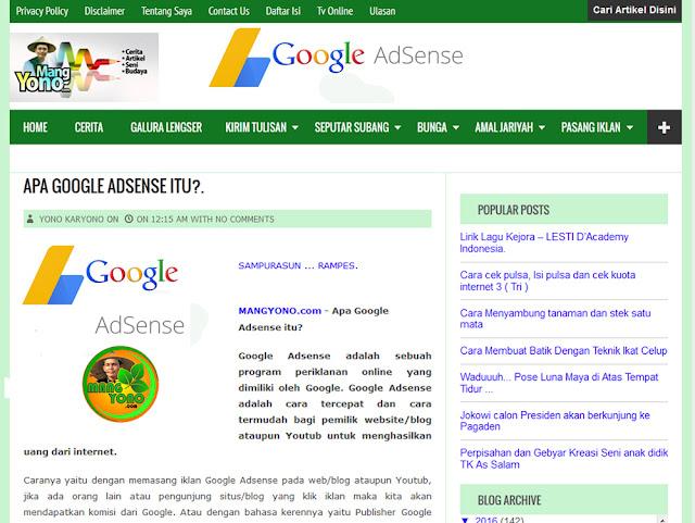 Apa Google Adsense itu?.