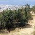 Θεσσαλονίκη: Απαγόρευση κυκλοφορίας σε περιοχές της Χαλκιδικής και στο Σέιχ Σου