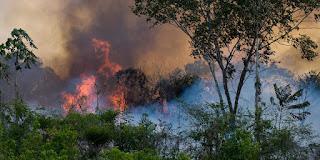 Jair Bolsonaro blames the NGOs for fire in Amazon