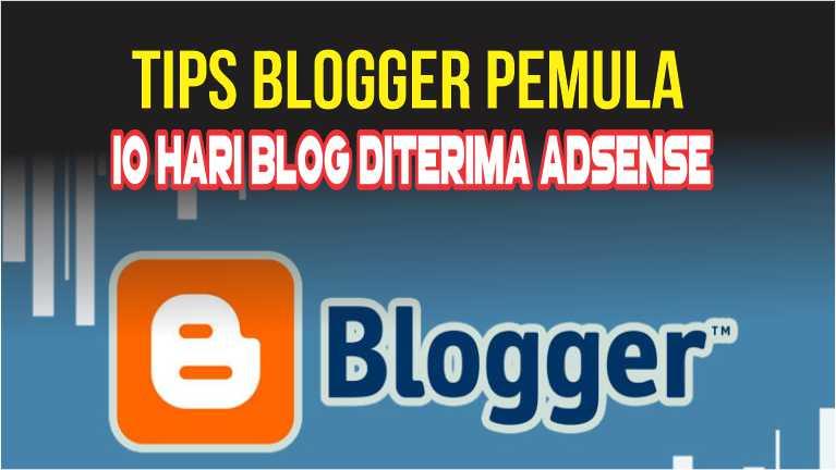 Tips Buat Blogger Pemula, 10 Hari Blog Diterima Adsense