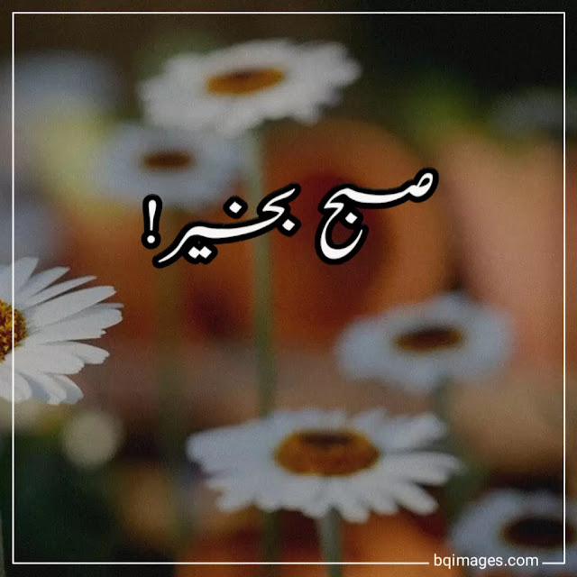subha bakhair images free download