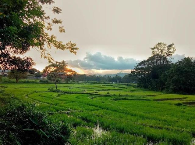 සිත් සුවපත් වන - සීතකන්ද අරණ්ය සේනාසනය ☸️🙏😇 (Sithakanda Aranya Senasanaya) - Your Choice Way