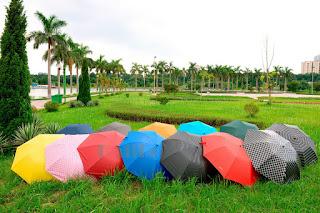 Ô Dù che mưa thời trang Kalila tự động 2 chiều Made in Việt Nam