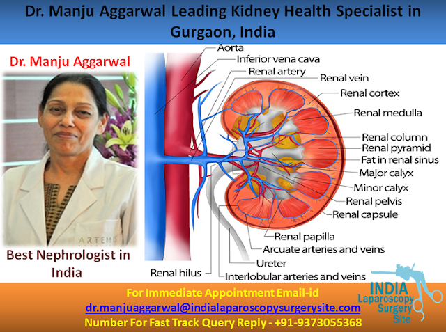 Dr. Manju Aggarwal Leading Kidney Health Specialist in Gurgaon, India