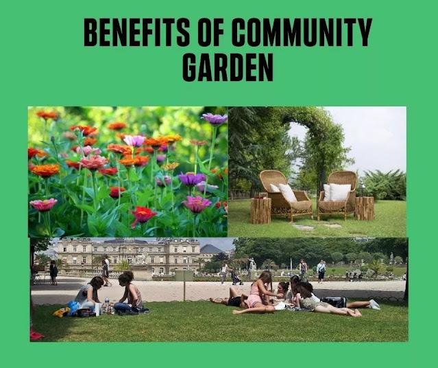 Benefits of Garden