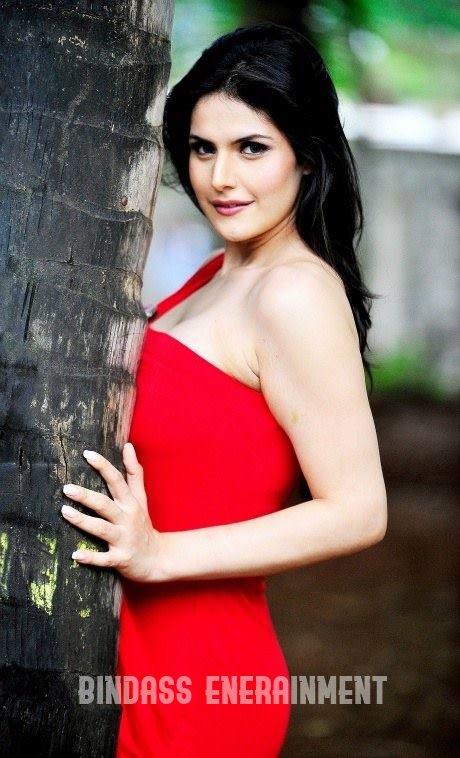 Zareen Khan6