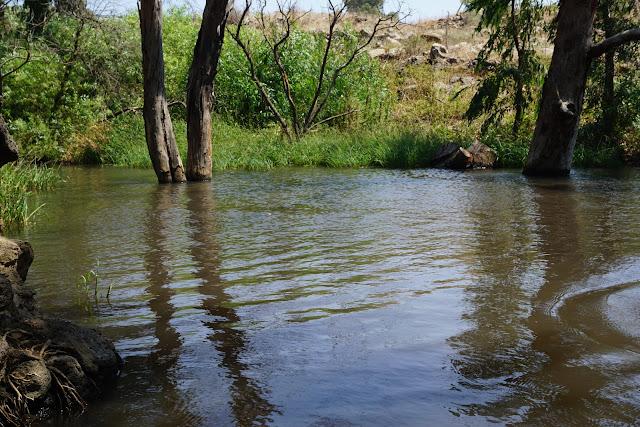 בריכת מים ליד אניעם