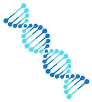 ADN más parecido al Humano