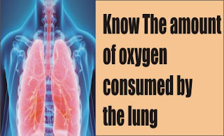The amount of oxygen consumed by the lung