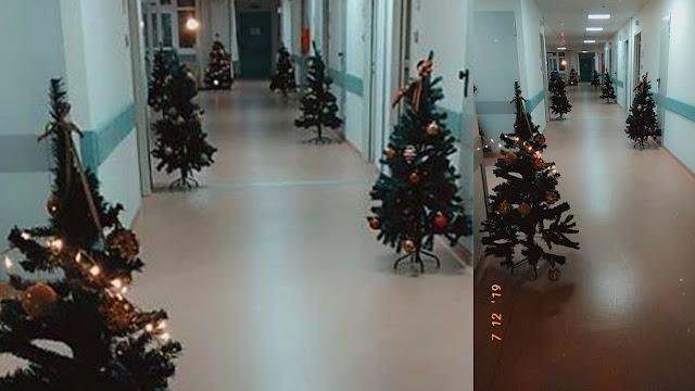Δωρεά Χριστουγεννιάτικων δέντρων στην Ψυχιατρική Κλινική του Γ.Ν. Αργολίδας