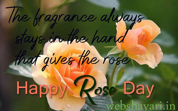 quotes rose quotes