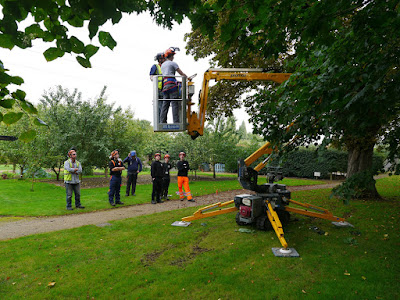 Arboriculture-and-Forestry-courses.jpg