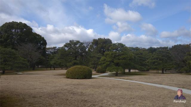 Taman minimalis yang cantik