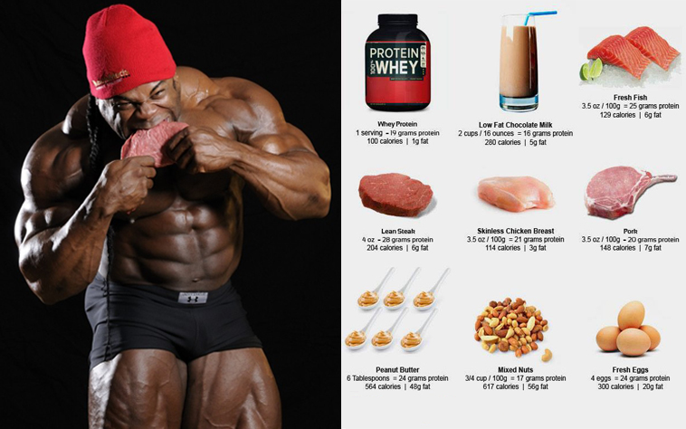 Do You Need High Protein To Build Muscle