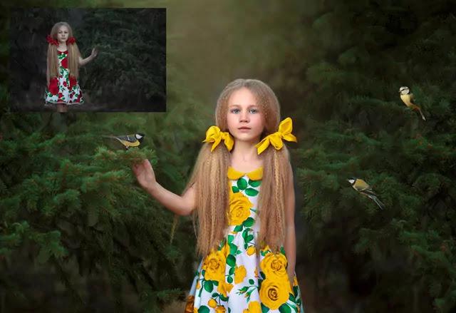 Birds Photoshop Overlays