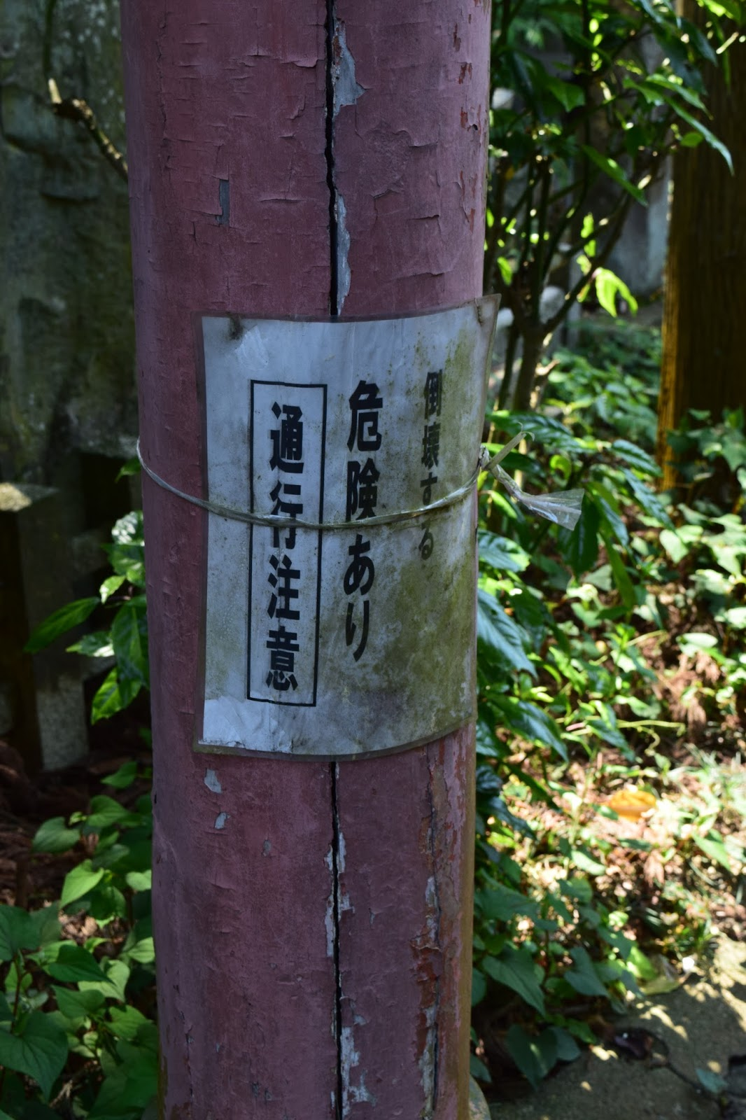 Abandoned Shinto Shrine Kyoto