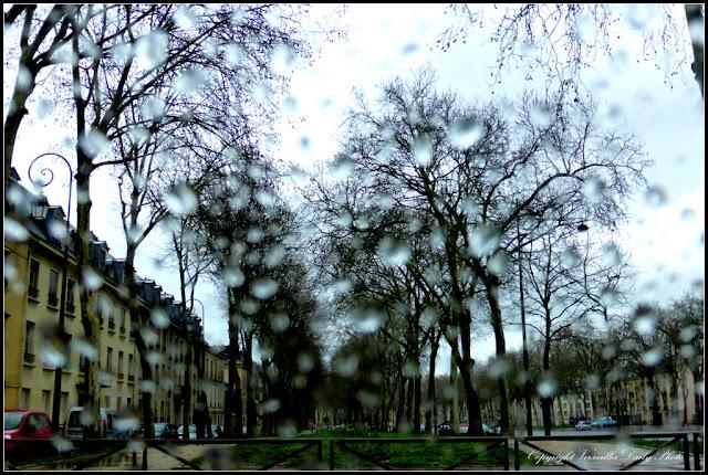 Pluie Avenue de Paris à Versailles Rain