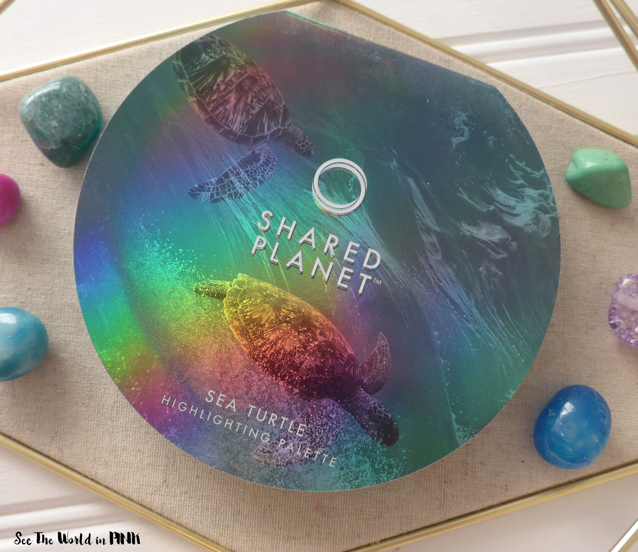 Shared Planet Sea Turtle Sea Turtle Highlighting Palette