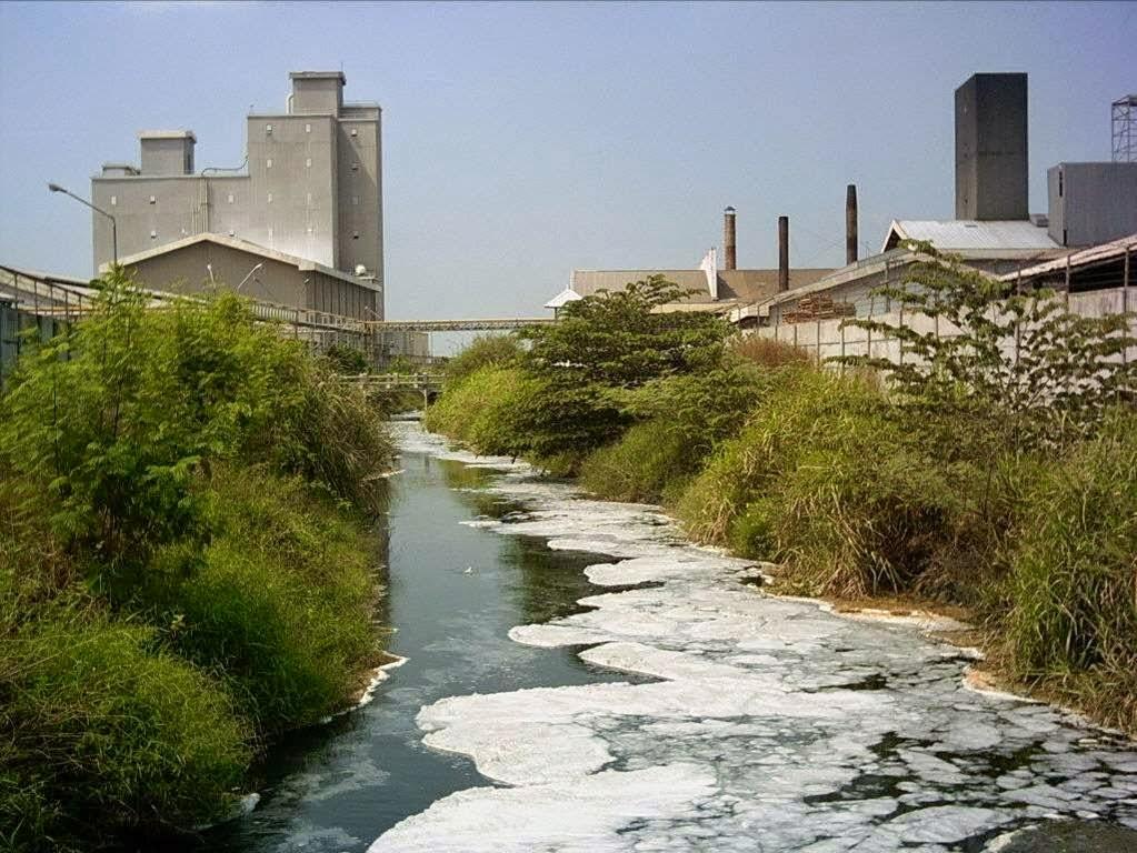 Makalah Hukum Lingkungan Analisis Kasus Pencemaran Air Oleh Limbah Pabrik Pt Marimas Di Semarang
