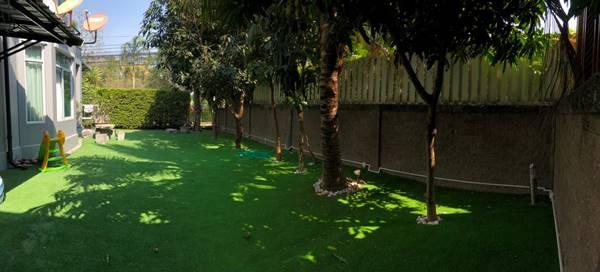 ขายบ้านเดี่ยว The Plant เดอะ แพลนท์ แจ้งวัฒนะ เมืองทอง ปากเกร็ด นนทบุรี