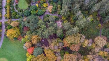 Un otoño seco y caluroso: que no nos pille desprevenidos en el jardín