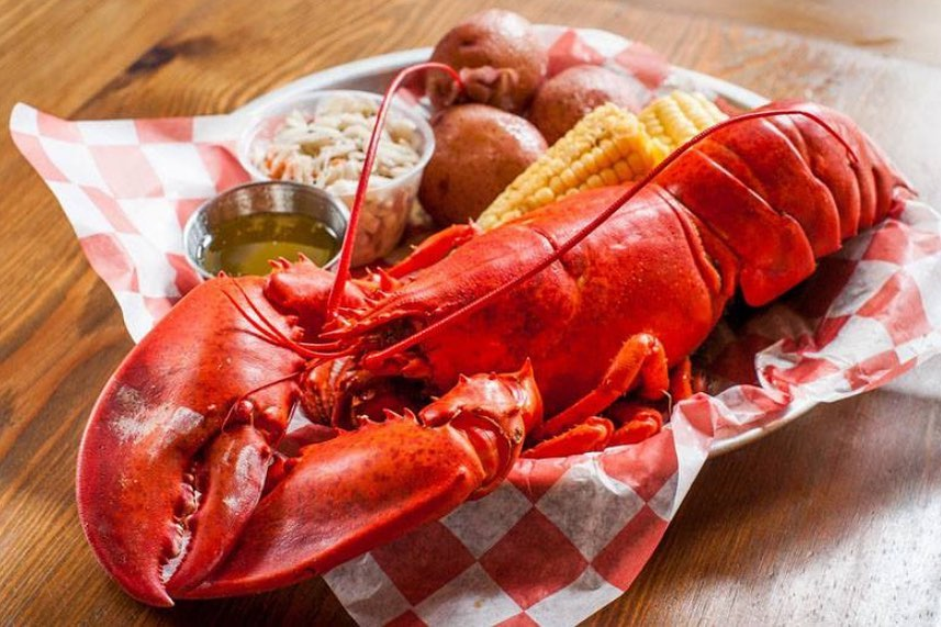 National Lobster Day Wishes