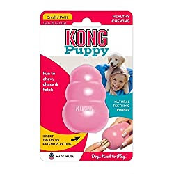 Hundespielzeug Kong Puppy