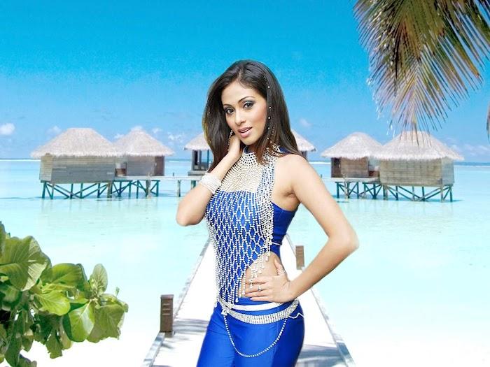 Actress Sada Hot & Sexy Photos