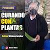 Curando con plantas